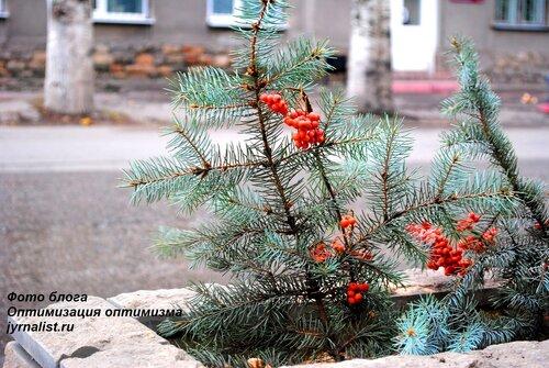 луганск последний день осени