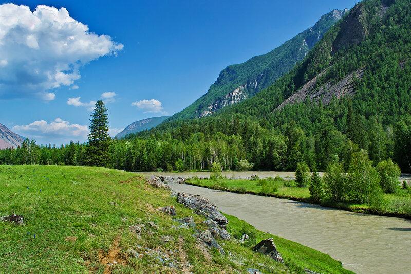 Река Чуя Горный Алтай