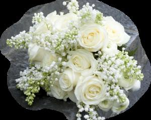 Плейкаст белых роз золотое свечение