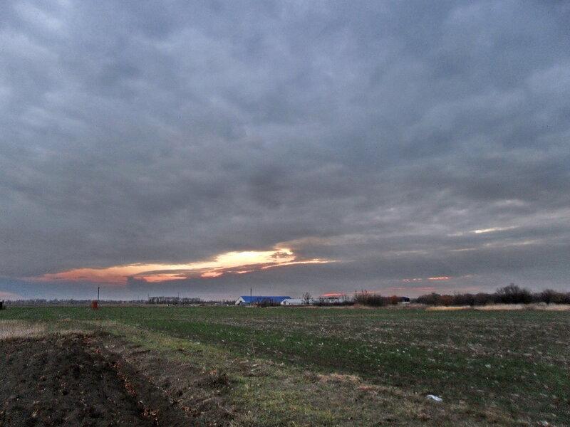 Последний вечер уходящей осени в дачно-полевых условиях...