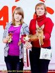 выставка 24,25 ноября Челябинск-Катус