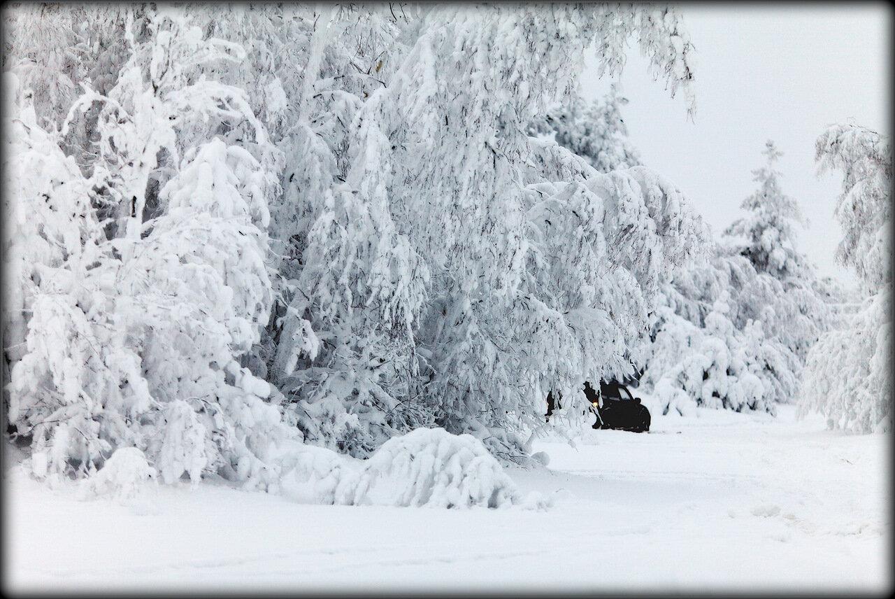 Застрявшие в снегах.