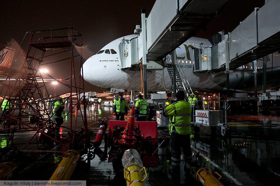 Вена Москва рейсы от 5959 руб расписание цены