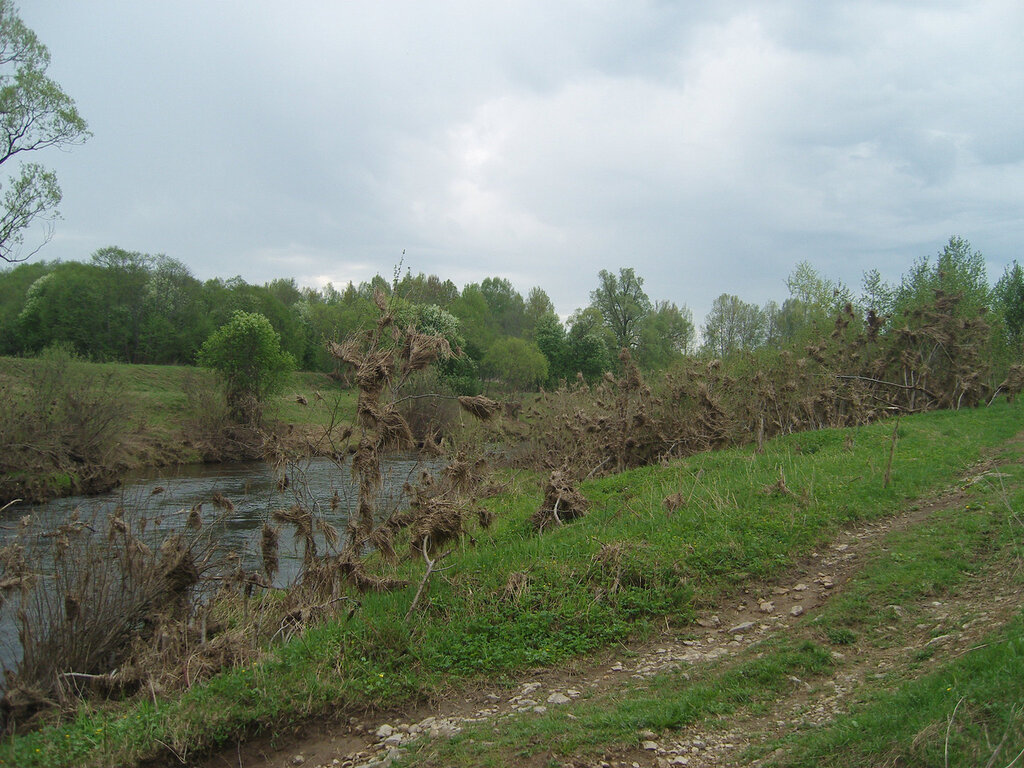 берега реки Вори. Свидетельства локального потопа при половодье