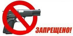 Незаконное хранение оружия в Бричанах