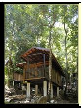 Малайзия. Лангкави. BerjayaLangkawi_Rainforest_Chalet_-_Facade