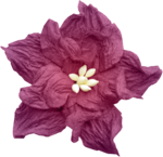 LaurieAnnHGD_AutumnGlow_Flower2.png
