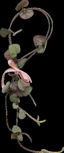 «Day Rose» 0_981ce_37232e6c_L