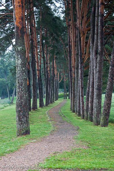 Парк Мирского замка