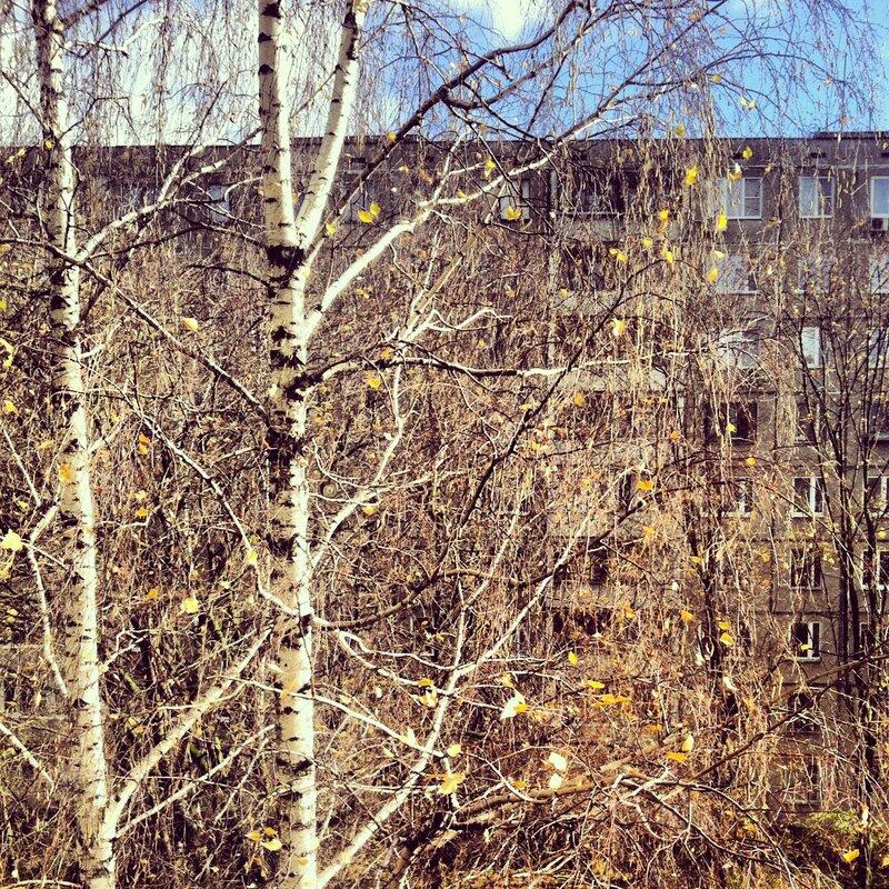 Октябрь за окном