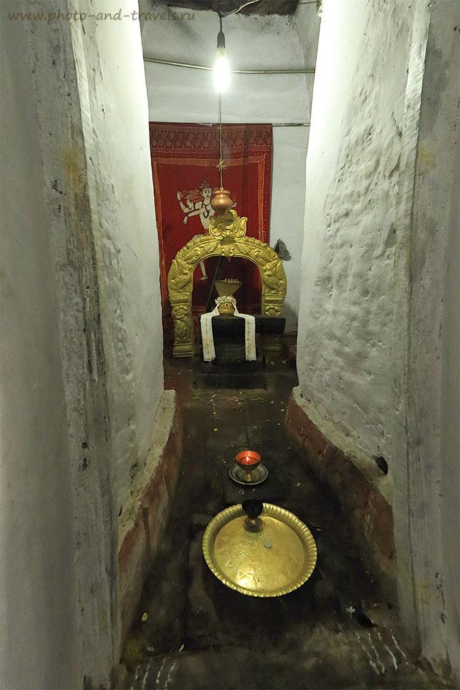 Фото 19. Поездка в Индию. Город Бангалор. Храм Нанди - золотое ярмо.