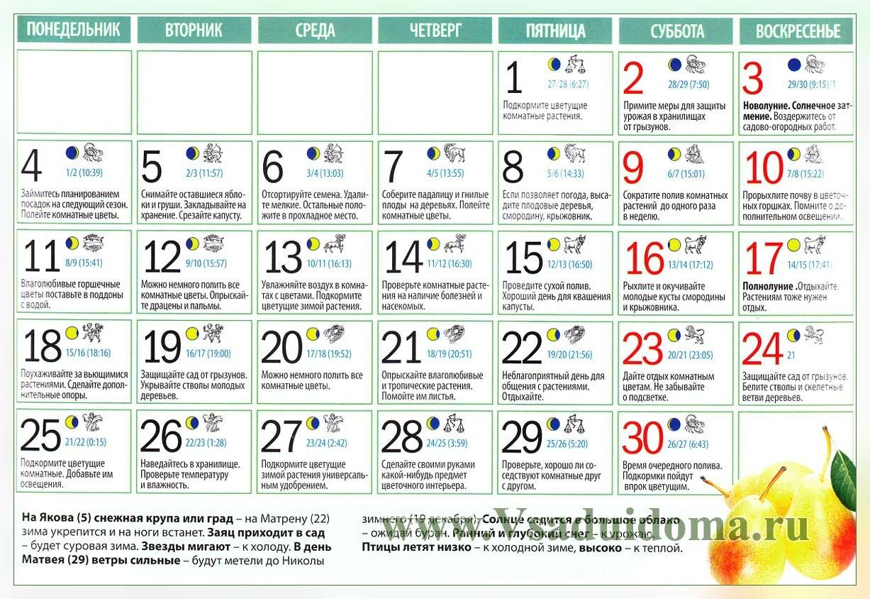 Календарь дачника и садовода - ноябрь 2013