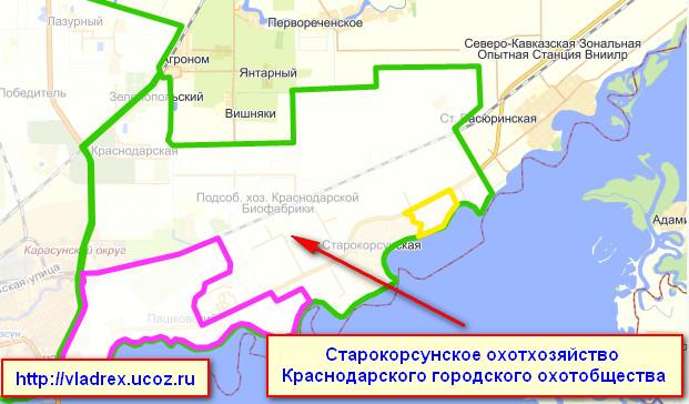 Схема расположения участка