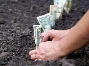 Россельхознадзор заинтересовался брошенными участками земли в Приморье