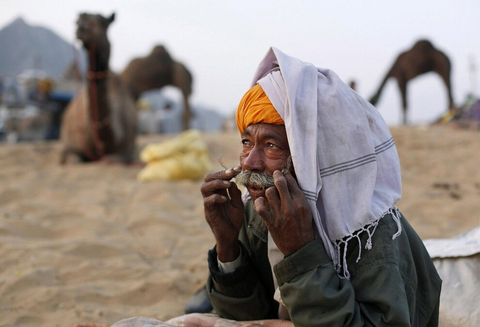 Торговец надеется привлечь покупателей не только своими отменными верблюдами, но и усами.