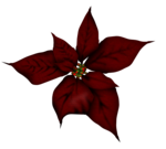 cuddlebeez_cb_flower5.png