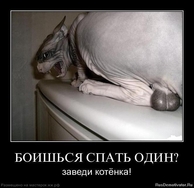 https://img-fotki.yandex.ru/get/6417/137106206.1cc/0_9d5e5_9b1435d8_orig.jpg