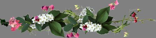 تحديث الربيع من ويندوز 10 يصل في إبريل المقبل 0_925d4_e041eaab_L.p