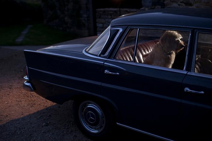 Одиночество в машинах