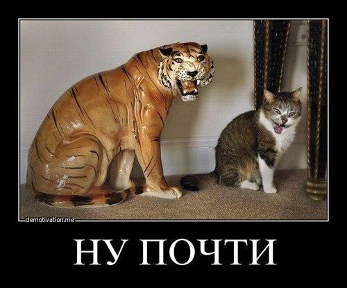 http://img-fotki.yandex.ru/get/6417/22466477.179/0_13d927_7209d0c0_L.jpg