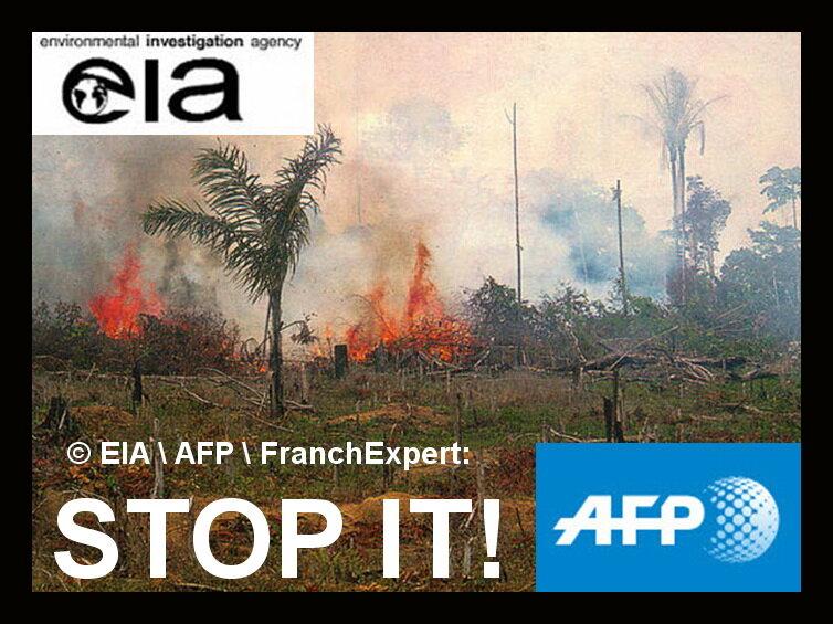 Уничтожение тропических лесов Африки