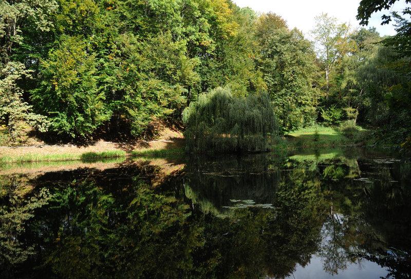 Пруд в Ботаническом саду