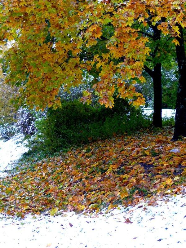 Первый снег 19 октября 2009 г.
