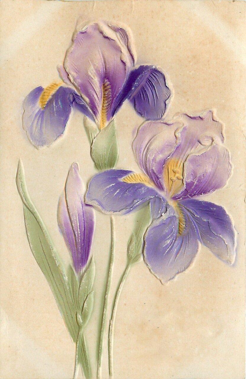 картинки открытки цветы: