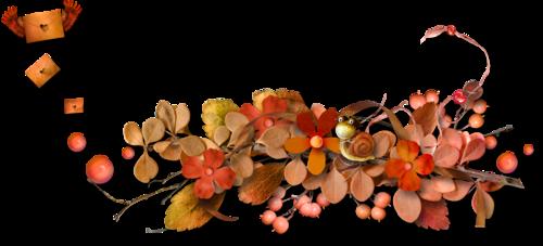 осень (37).png