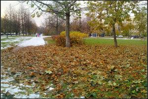 Cанкт-Петербург. Дачное. 29 октября 2012
