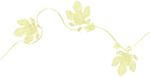 feli-acig-leaves on string.png