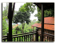Малайзия. Лангкави. Berjaya Langkawi Resort. Rainforest Studio
