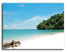 Малайзия. о.Борнео. Фото Stan_pit - Depositphotos