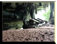 Малайзия. о.Борнео. Фото shanin - Depositphotos
