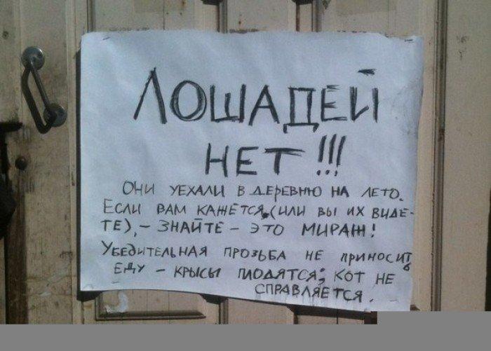 http://img-fotki.yandex.ru/get/6418/137106206.1f8/0_9ff76_b92b3805_orig.jpg
