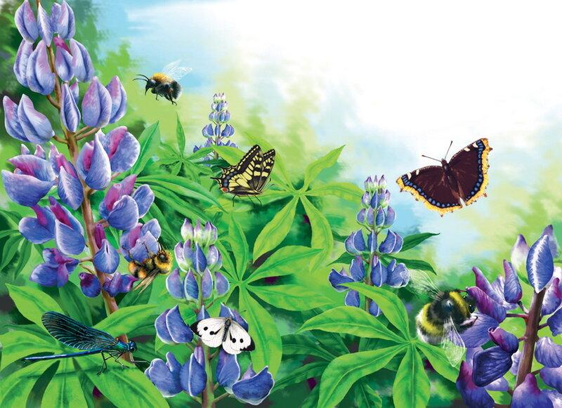 Та бабочка, слетевшая с небес. Елена Доведова