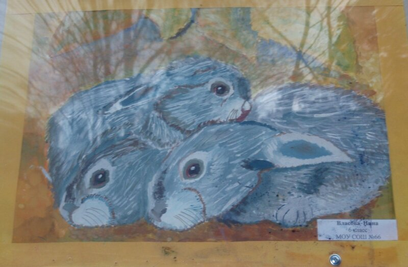 Классный рисунок зайчиков