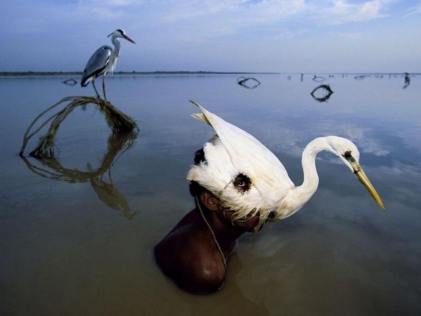 Лучшие фото недели отNational Geographic 0 141bf2 dd2df96d orig
