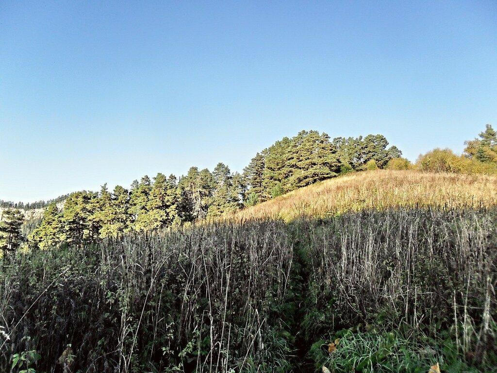 На горной тропе, утром в сентябре