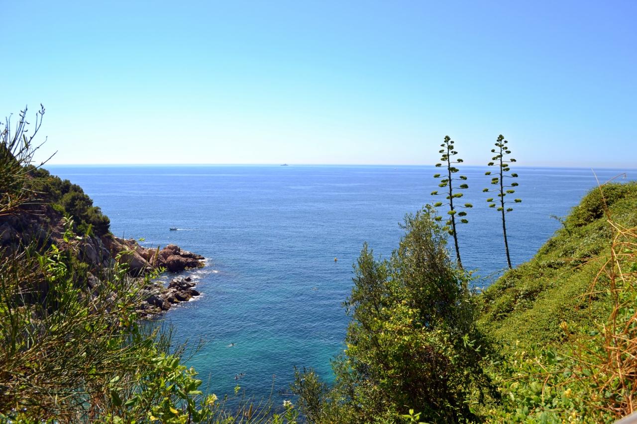 У синего моря