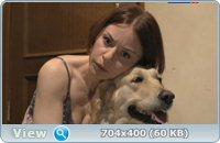 Собачья работа (2012/SATRip)