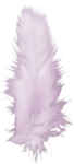 ial_llv_feather.png