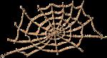 NLD Halloween Freebie Spiderweb sh.png