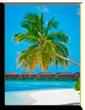 Мальдивы. Andrej Stojs - shutterstock