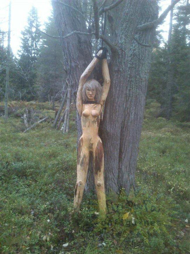 Девушка привязана в лесу фото фото 179-976