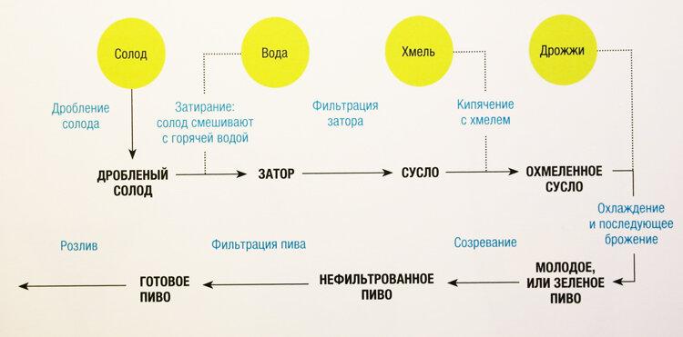 На этой схеме показан
