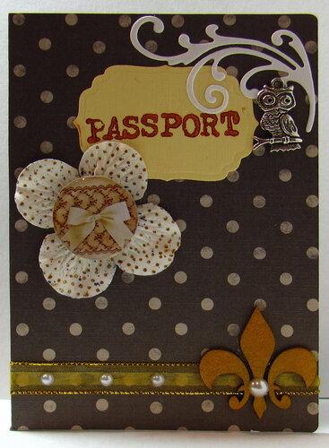 Паспорт в подарок