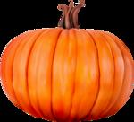 dus-intothedarkness-pumpkin1.png