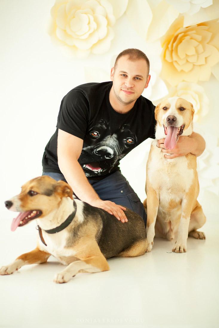 Фил и Ластик собаки из приюта догпорт