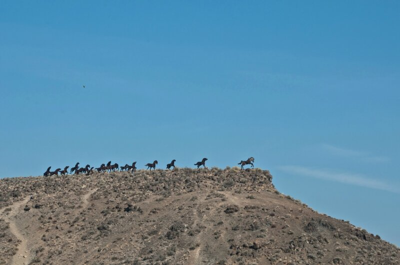 Мемориал диким лошадям